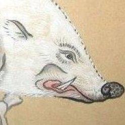 The ramblings of the Boar